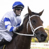 Kolding defies doubters to fight back for All Aged Stakes victory
