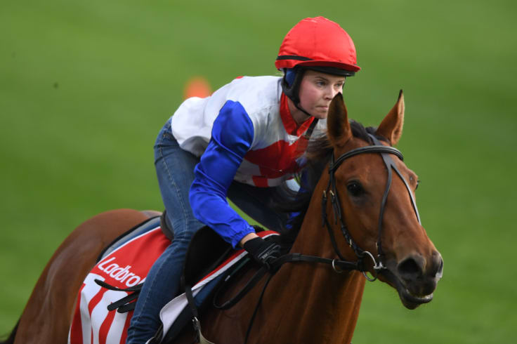 Plotting a challenge: Savvy Coup gallops at Moonee Valley on Tuesday.