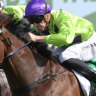 Roaring home: Nakeeta Jane comes with a barnstorming run to win the Light Fingers Stakes.