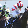 All Time Legend keeps Bridge and McEvoy guessing