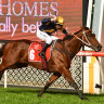 'Congratulate them. Well done': V'landys' praise for Victorian racing