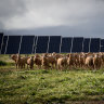 NSW to invest $380 million to turbocharge renewable energy rollout