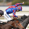 Geelong Racing Club chases Melbourne Cup exemption