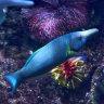 One fish, new fish, girl fish, blue fish: sex change at the aquarium