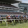 Crowds at Flemington for last year's Melbourne Cup race.