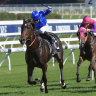 Beyliks and In Flanders in Godolphin's first autumn wave