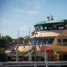 Sydney ferry master sacked for falling asleep on job