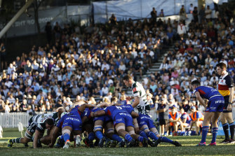 Rugby Australia is expected to announce on Tuesday that it has purchased the rights to the Shute Shield and Brisbane equivalent the Hospital Cup.