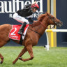 Written By primed to bounce back in Lightning Stakes