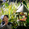 New otters and smiling kids: Melbourne's zoos reopen