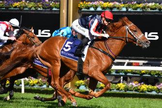 Dalasan claims the Danehill Stakes at Flemington in September.