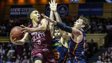 Travis Trice of the Bullets in action during the round 6 NBL game between the Brisbane Bullets and the Cairns Taipans at Brisbane Convention and Exhibition Centre on Sunday.