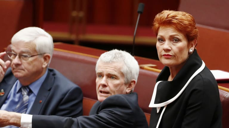It wasn't a good year for Pauline Hanson, or her party.
