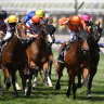 Hot weather forces early Flemington start on Guineas day