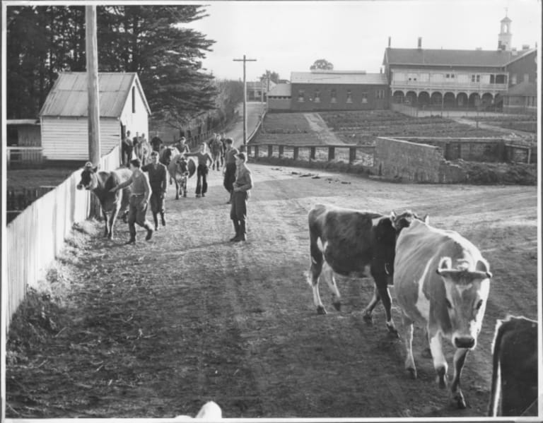 Full circle: children working on the farm at Ballarat District Orphan Asylum circa 1925.