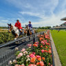 How to get a ticket for the Melbourne Cup
