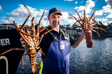 The emergency 'lobster flights' to save $800 million worth of seafood