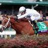 Waterhouse says Breeders' Cup winner 'like getting a horse from Mars'