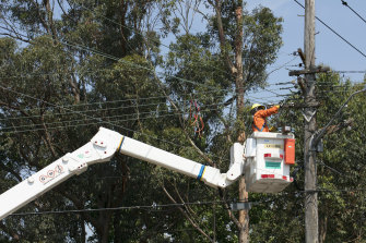 Ausgrid workers in Killara work to repair power lines following Wednesday's storm.