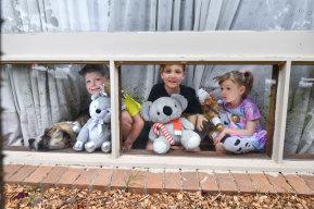 Alice Gibson'schildrenHarley, 6, Fergus, 8 and Lorelei, 4 with their bears.