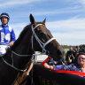 Return Apollo Stakes win will ignite Winx for farewell campaign