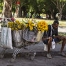 'Internet in your pocket!': Cubans finally allowed mobile access to online world