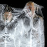 What happens when you vacuum seal yourself in a giant plastic bag?