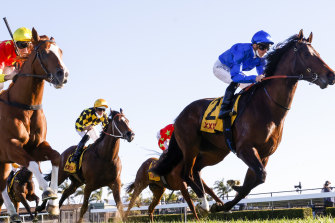 Anamoe (blue silks) gets past In The Congo to win the Run To The Rose in September at Kembla Grange.