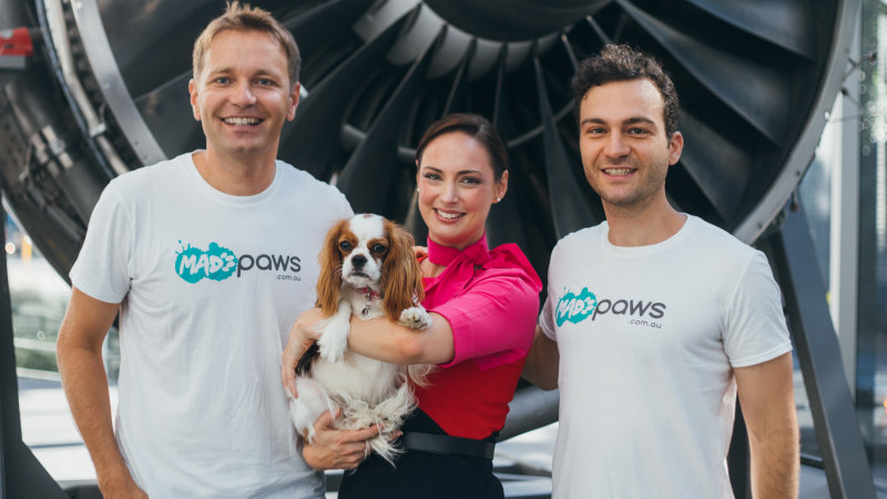 Pet matchmaking service raises $5m from backers including Qantas