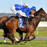 Screening process: TV action won't be the same as Trekking north for Stradbroke