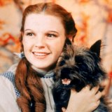 Judy Garland wore the slippers in the 1939 film The Wizard of Oz.
