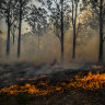 Reality check: there are limits to fighting fire with fire