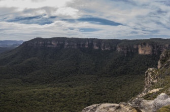 The NSW government has bought the Radiata Plateau, 300 hectares of Blue Mountains bushland.