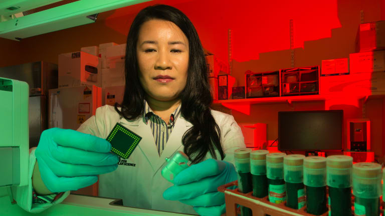 Molecular biologist Dr Lesley Cheng at La Trobe University has worked on a blood test to detect and diagnose Alzheimer's disease years before symptoms appear by detecting abnormalities in the blood of patients.