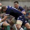 Seymour, Gray back to boost Scotland squad