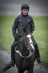 Glen Boss rides Constantinople at trackwork on Friday.