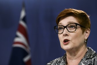 Foreign Minister Marise Payne will decide the future of the Confucius Institutes at Australian universities.
