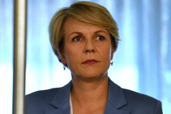 Tanya Plibersek, Labor's shadow minister for women.