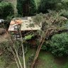 A damaged home in Kalorama after five trees crashed into it during the recent storm.