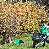 Volunteers at the Werribee Park Heritage orchard.