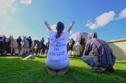 Anti-vaccine protesters gather outside the Melbourne Royal Botanical Gardens.