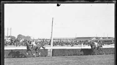 Phar Lap passes the finish post at Randwick races, Sydney on October 9, 1929.