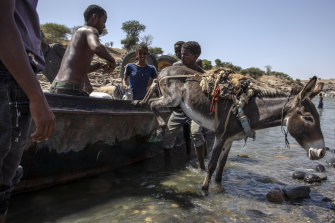 Tigray refugees who fled the conflict in the Ethiopia's Tigray arrive with their donkey on the banks of the Tekeze River on the Sudan-Ethiopia border, in Hamdayet, eastern Sudan, on Saturday, November 21.