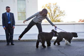 First lady Michelle Obama with her dogs Bo and Sunny at a Christmas reception at the White House in 2015.