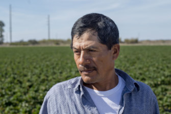 "Antonio Vengas, a field worker, says: ""I see the robot and think, 'Maybe we're not going to have jobs anymore.'"""