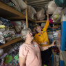 Money please: Material donations to bushfire victims cause logistical nightmares