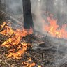 Gippsland fires downgraded after residents told it's too late to leave