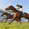 Prebble delivers Memsie Stakes win in whirlwind 48 hours