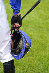 """""""Reform is needed now"""": The jockey's whip."""