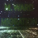 Migration Stories album cover.